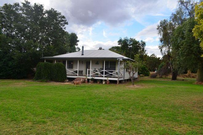 Picture of 39 Bingera Street, PALLAMALLAWA NSW 2399
