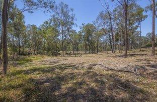 Picture of Lot/253 Mirambeena Drive, Pimpama QLD 4209