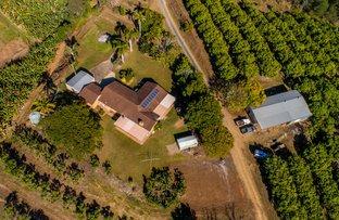 Picture of 214-264 Raynbird Road, Narangba QLD 4504