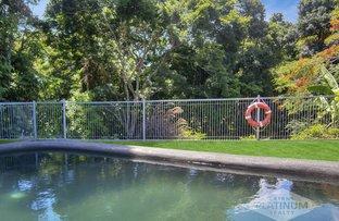 53 Veivers Road, Palm Cove QLD 4879