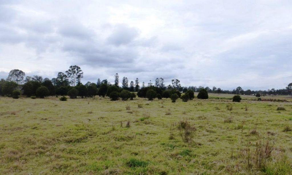 Lot 140 Scrub Road, Gunalda QLD 4570, Image 0