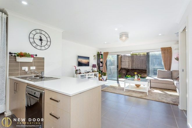 Picture of 6/4 Annie Douglas Street, CASEY ACT 2913