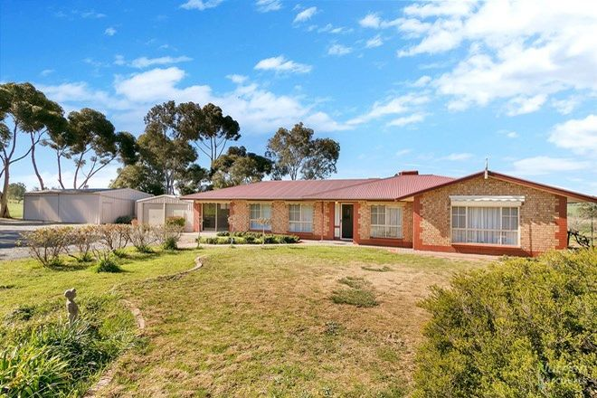 Picture of 1508 Barrier Hwy, SADDLEWORTH SA 5413