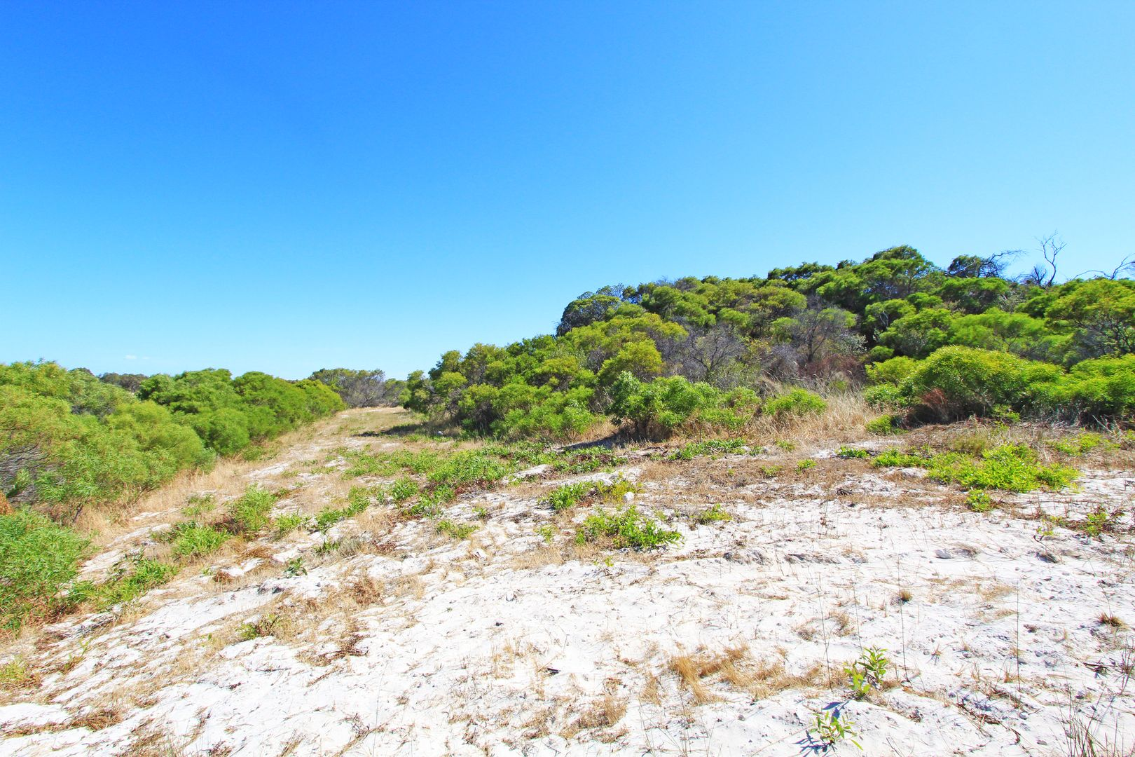 Lot 107 Homestead Loop, Jurien Bay WA 6516, Image 1