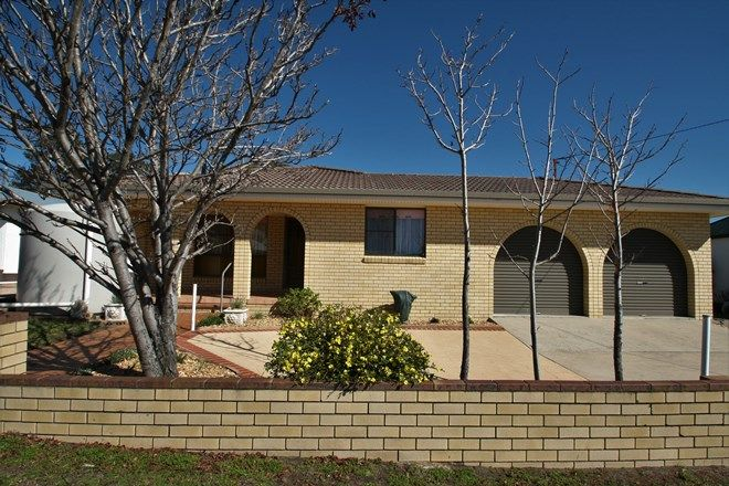 Picture of 20 McGregor Terrace, STANTHORPE QLD 4380