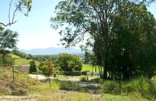 lot 1 Old Brierfield Road, Bellingen NSW 2454