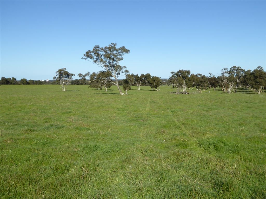 259 Emu Flat Road, Keith SA 5267, Image 0