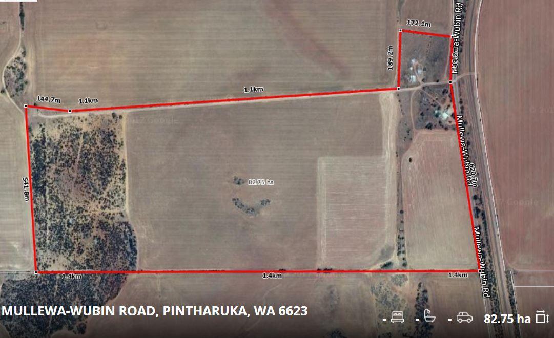 7870 Mullewa - Wubin Road, Pintharuka WA 6623, Image 0