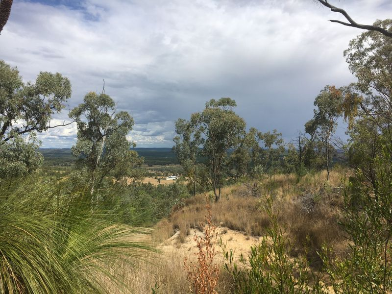 62 Acacia Crescent, Warialda NSW 2402, Image 2