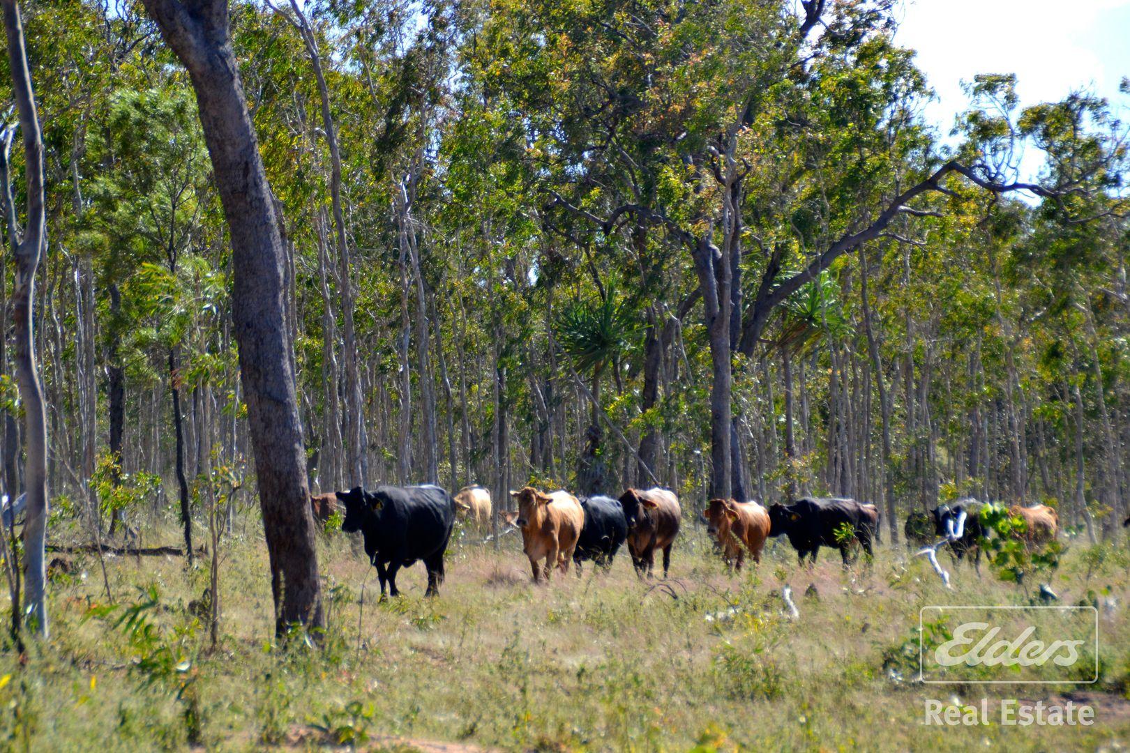 Dimbulah QLD 4872, Image 2