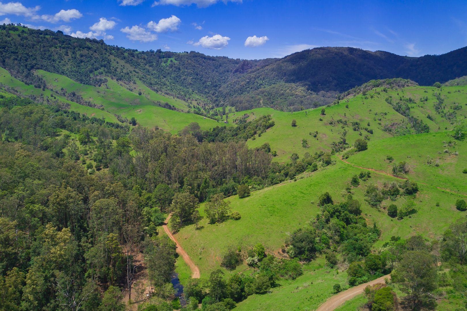 2001 Toms Creek  Road, Ellenborough NSW 2446, Image 1