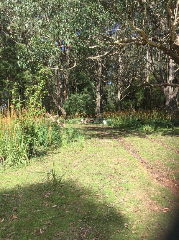 62 Mount Darragh Road, Wyndham NSW 2550, Image 2