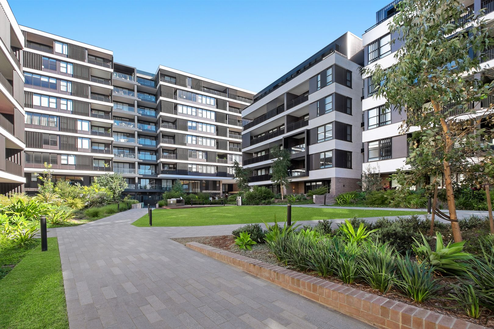 103/24A George  Street, Leichhardt NSW 2040, Image 0