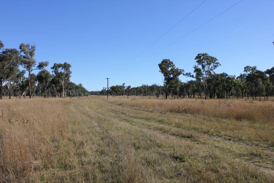 Thistledoo 14371 Guyra Rd, Tingha NSW 2369, Image 1