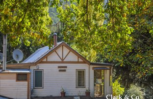 Picture of 16 Canons Creek Road, Gaffneys Creek VIC 3723