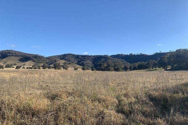 Picture of Lot 39/686 Queens Pinch Road, MUDGEE NSW 2850