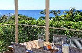 Picture of 3 Pilchers Gap, Sunshine Beach QLD 4567