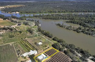 Picture of 28A Brand Drive, Loxton SA 5333