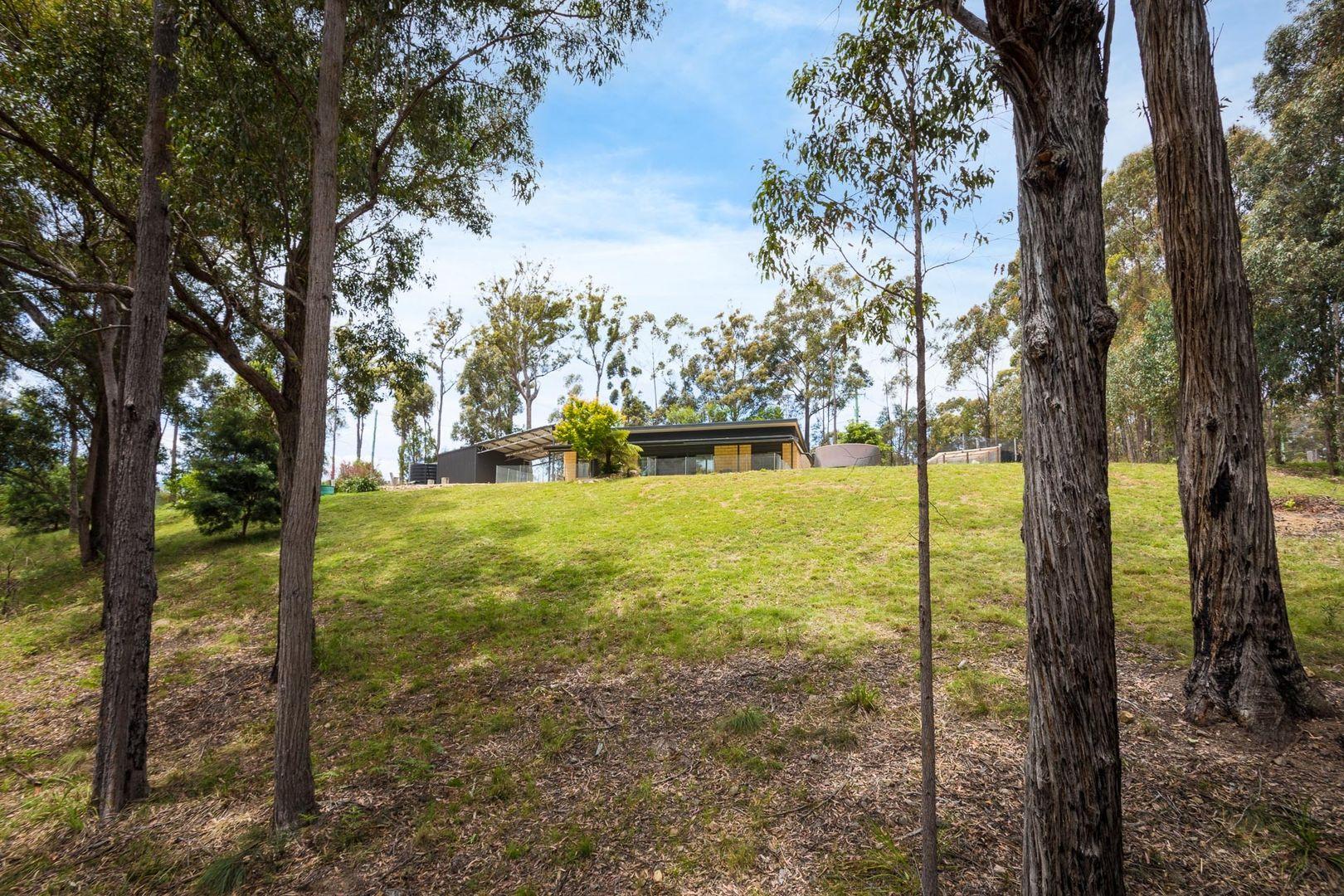 1263 Sapphire Coast Drive, Wallagoot NSW 2550, Image 2