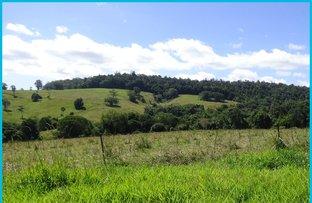 Picture of 8 McLean Road, Yungaburra QLD 4884