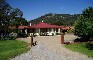 Picture of Brideb Road, Bendemeer NSW 2355