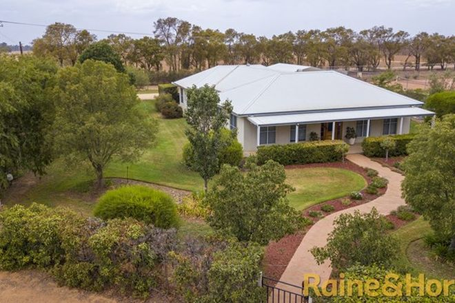 Picture of 32 Crossley Drive, NARROMINE NSW 2821