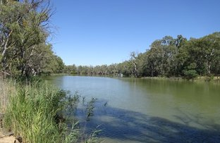 Picture of . Perricoota Forest Road, Moama NSW 2731