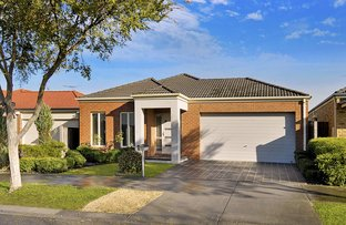 Picture of 11 Bellfield Drive, Craigieburn VIC 3064