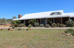 Picture of 1817 Wandobah Road, Gunnedah NSW 2380