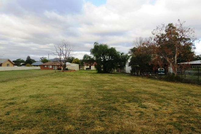Picture of 56 Paxton Street, DENMAN NSW 2328