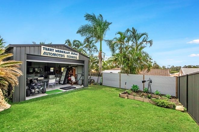 Picture of 64 Highfield Drive, MERRIMAC QLD 4226