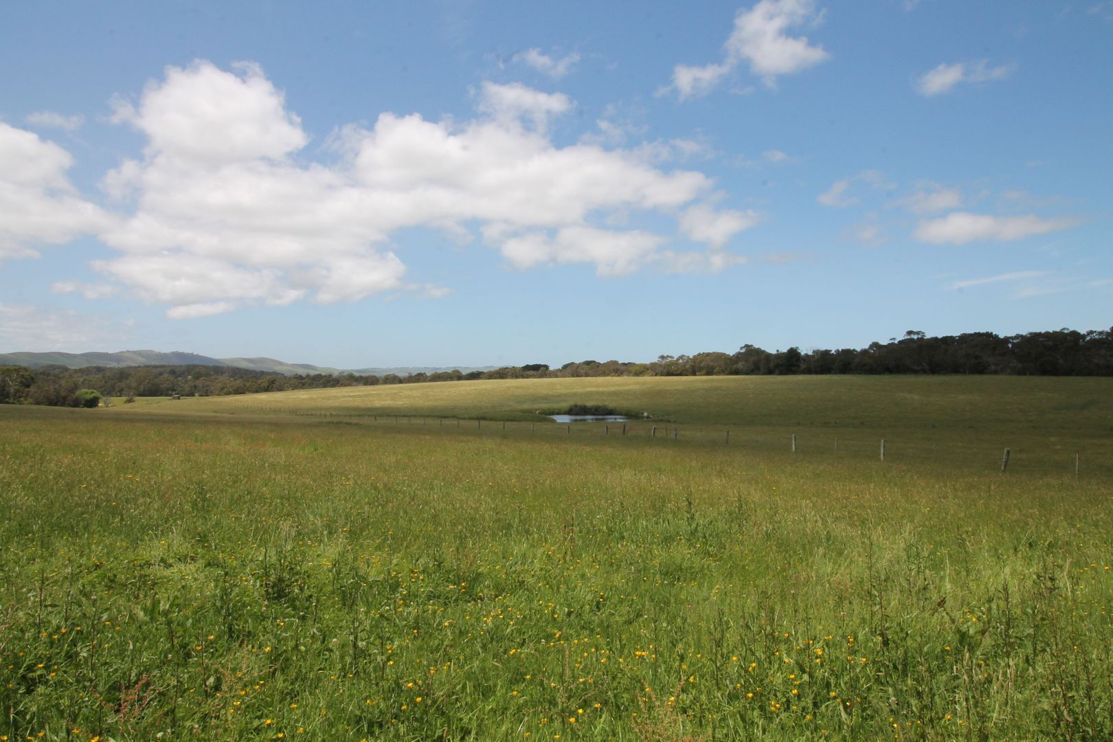 Part 11 Boundary Rd, Foster VIC 3960, Image 1