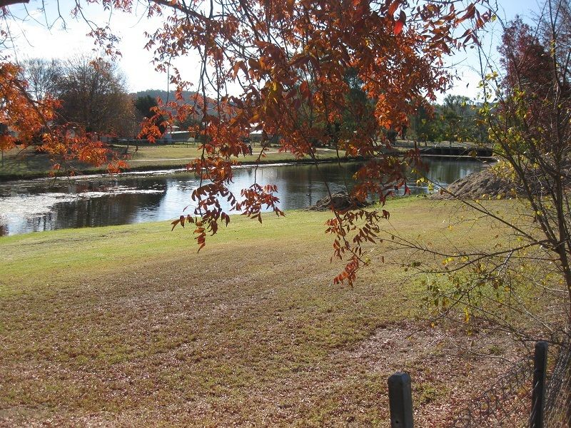 6-10 Creek St, Stanthorpe QLD 4380, Image 2