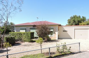 Picture of 30 Jarvis Avenue, Murray Bridge SA 5253