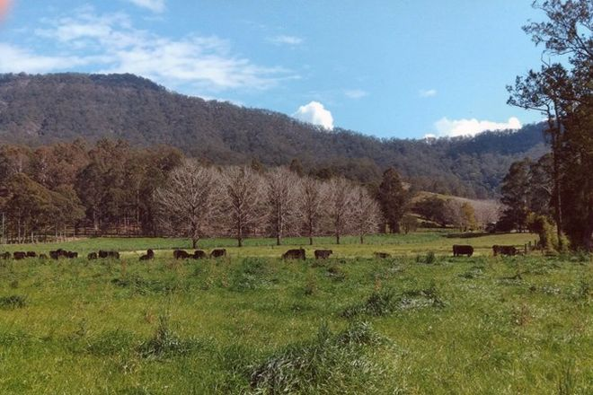Picture of 841 Lynch's Creek Road, KYOGLE NSW 2474
