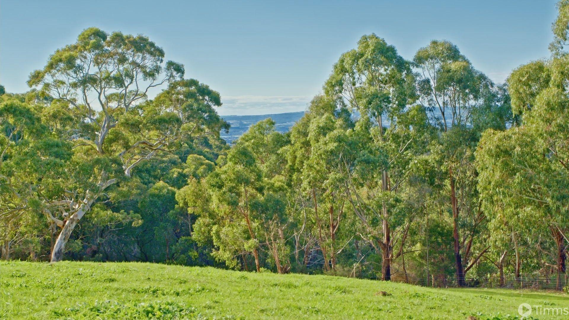 101 Range Road West, Willunga South SA 5172, Image 2