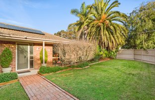 Picture of 14 Mathis Avenue, Tootgarook VIC 3941