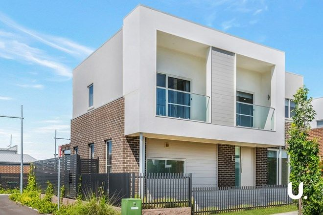 Picture of 3 Kanooka Street, DENHAM COURT NSW 2565