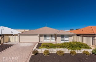 Picture of 167 Liberty Drive, Clarkson WA 6030