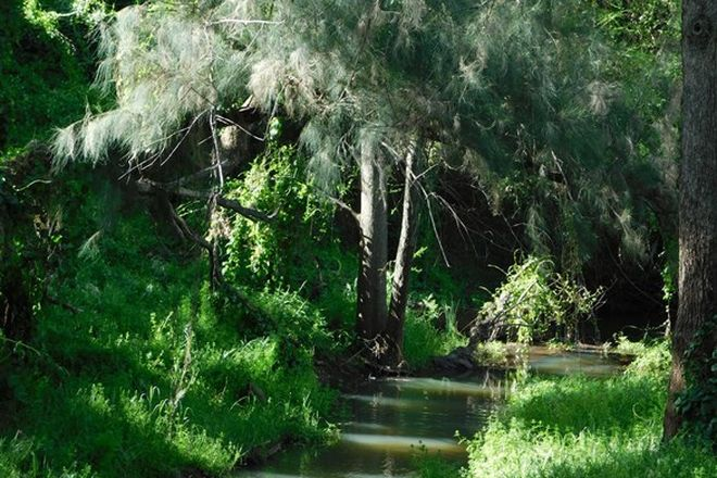 Picture of 3184 Spring Willows, BUGALDIE NSW 2357