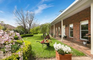 Picture of 13 Granya Grove, Mount Eliza VIC 3930