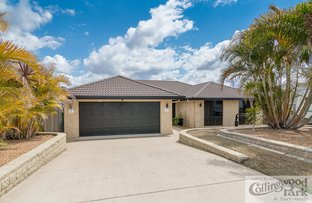 Picture of 17 Hamill Place, Collingwood Park QLD 4301