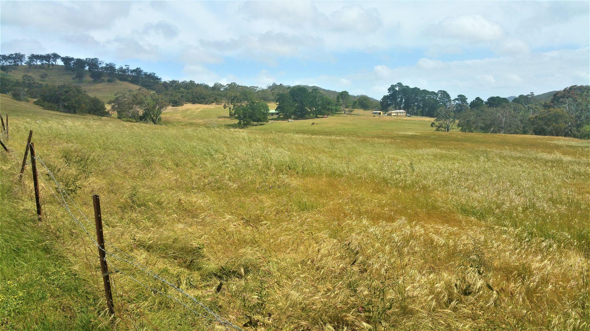 749 Blackfellows Creek Road, Kuitpo Colony SA 5172, Image 1