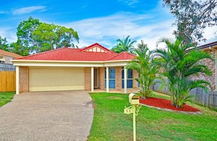 Picture of 11 Red Ash Court, Mount Cotton QLD 4165