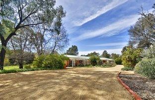 47 Cooinda Lane, Deniliquin NSW 2710