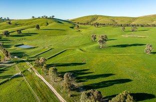 Picture of Tumbarumba Road, Wagga Wagga NSW 2650