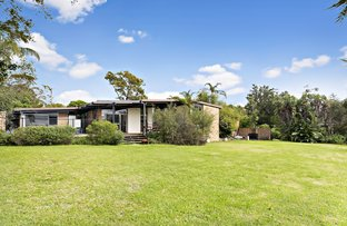 Picture of 199 Warrimoo Avenue, St Ives NSW 2075