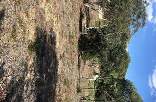 Picture of 9 Sandbox Road , Wentworth Falls NSW 2782