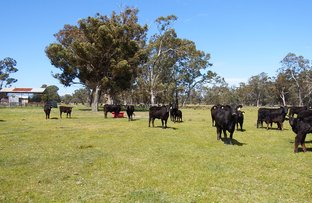 Picture of 27 & 27A Ziebells Road, Euroa VIC 3666