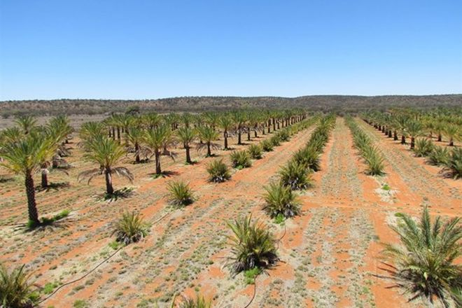Picture of . High River Stock Route, ALICE SPRINGS NT 0870